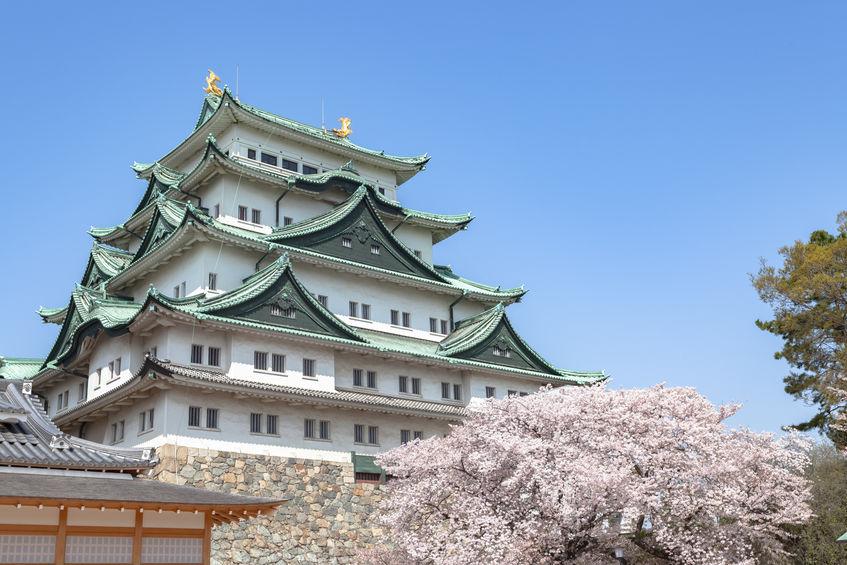 2020年 お花見ドライブ関東おすすめスポット